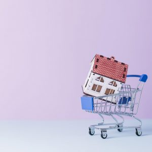 local housing market